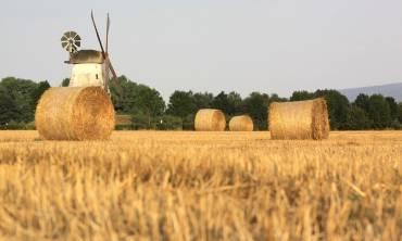 Agrarische onderneming